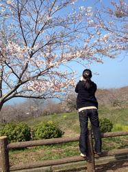 sakura2013032_03.JPG