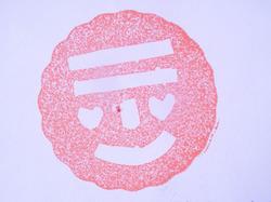 2013_11_10_stamp_14.jpg