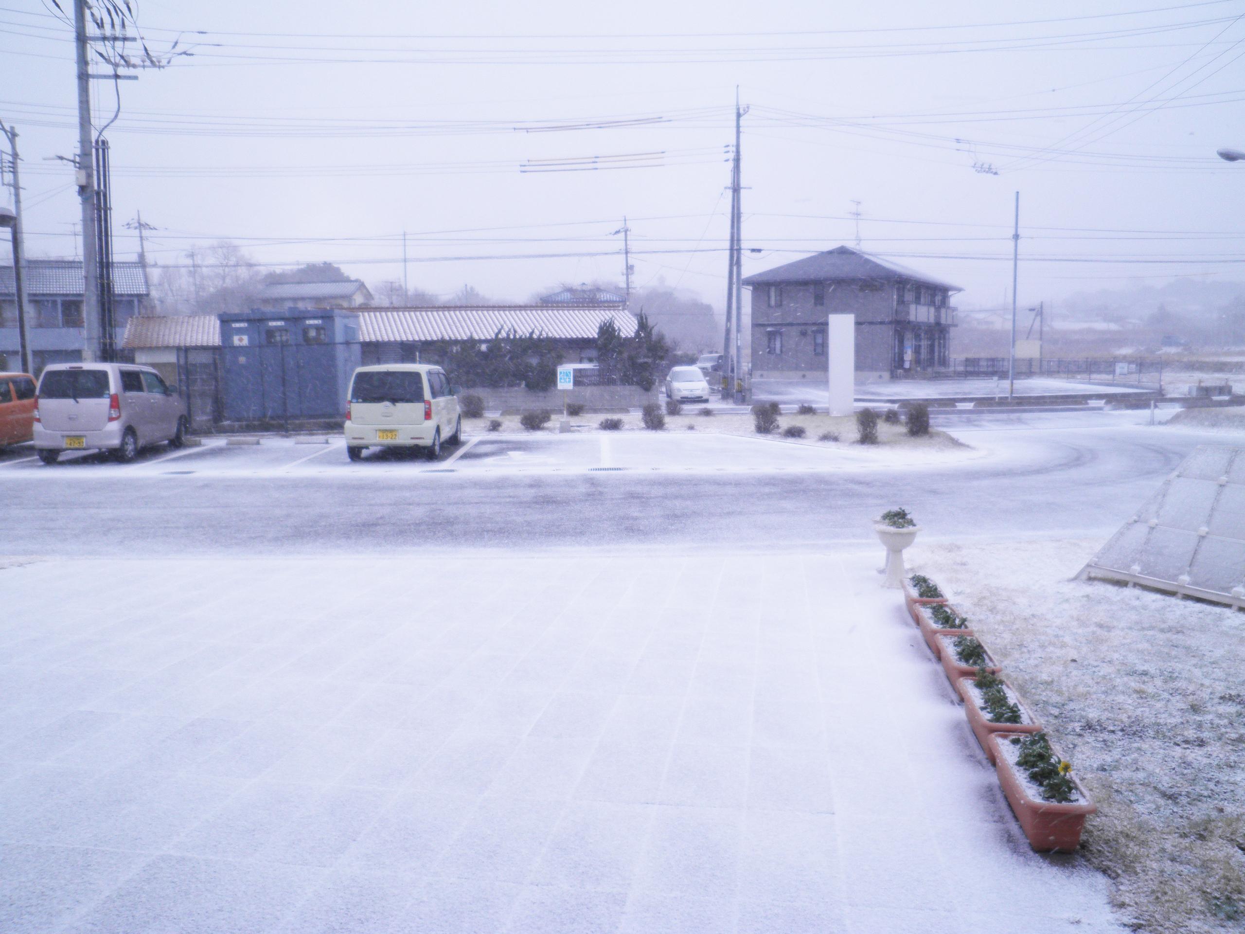 2011_1_30_01.jpg